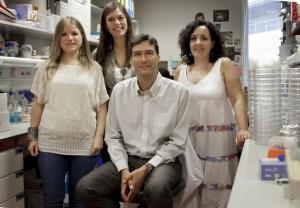 celulas-madre-Un-trabajo-espanol-descubrimiento-del-ano-en-medicina-regenerativa_image_380